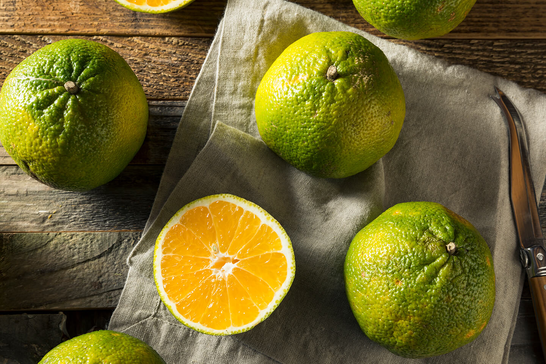 Ulgi Fruit
