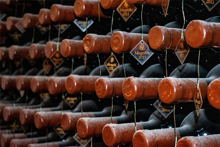 Monetizing your wine cellar can be a good revenue stream when done correctly.