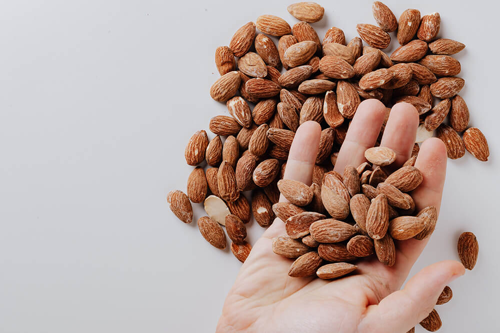 Hand holding almonds.